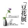 「豆花展」花のうつわと小さな花々